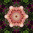 Blossoming In Nature Mandala  by DesJardins