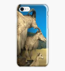 Natural environment diorama - Steinbocks in the desert  iPhone Case/Skin