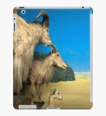 Natural environment diorama - Steinbocks in the desert  iPad Case/Skin