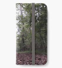 Fallen Leaves Trail Walk iPhone Wallet/Case/Skin