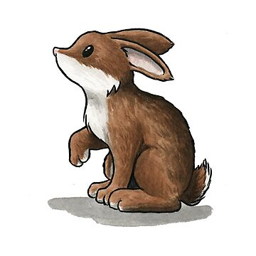 Rabbit by Mary-Barrows