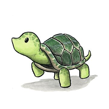 Turtle by Mary-Barrows