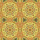 Dream Catcher Mandala  by DesJardins