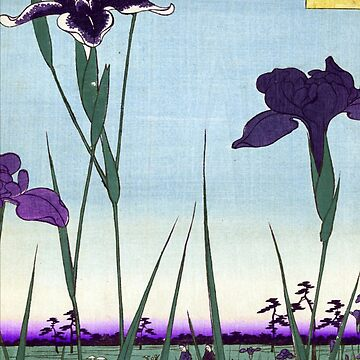 Japanese Irises in Landscape by Pixelchicken