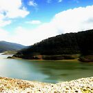 Thomson's Dam  by cjcphotography