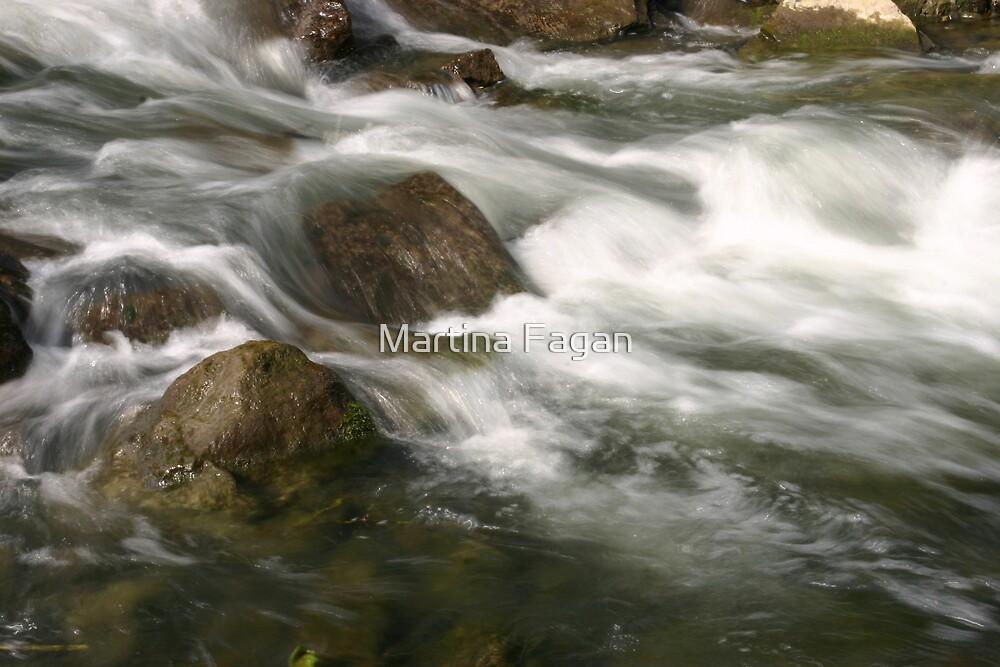 Water Rush by Martina Fagan