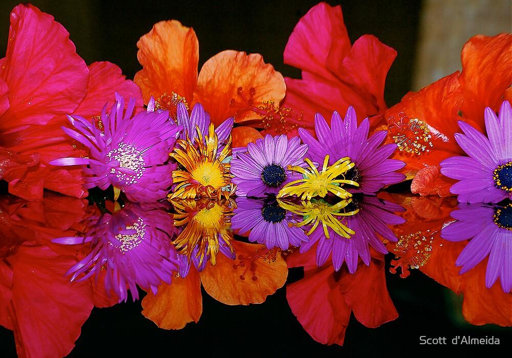 AS ABOVE SO BELOW - FLOWERS by Scott  d'Almeida