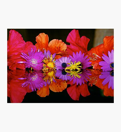 AS ABOVE SO BELOW - FLOWERS Photographic Print
