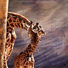 Tenderness by Judy Vincent