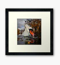 Swan & Birds Framed Print