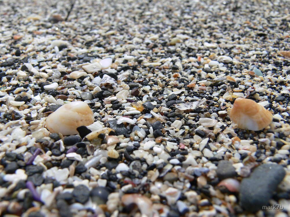 Lowdown on Sand and shells by mark7b