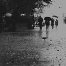 Rainy day by zinchik