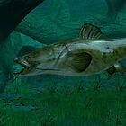 Flathead Catfish by Walter Colvin