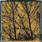 Golden Tree von MaruanDotCom