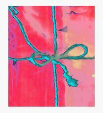 Atractivo azul eléctrico busca lazo rosa fluorescente... Lámina fotográfica