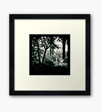 The Surreptitious Pixie Framed Print