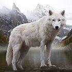 Wolf by Cliff Vestergaard