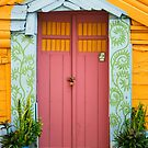 Pink Door by Hena Tayeb