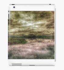 Stormy Salt Marsh iPad Case/Skin