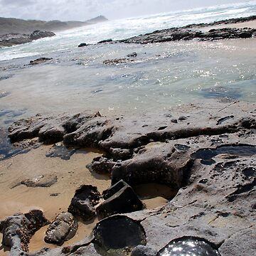 Champagne Pools, Fraser Island by pondyphotos