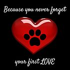 Because you never forget your first love by Kamira Gayle