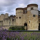 Tower of London by Forget-me-not