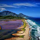 La Salinas, Isle De Margarita, Venezuela by Rob Diffenderfer