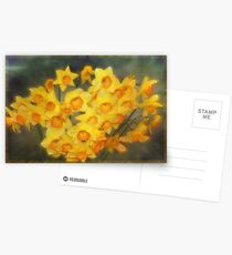 A Host of Golden Daffodils Postcards