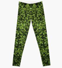 Topiary Leggings Leggings