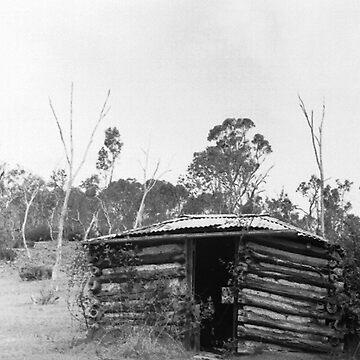 Mud & Sleeper Hut, Trunkey Creek, NSW. by chrisjoy