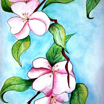 Apple Blossoms  by LindArt1