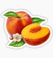 Peaches! Sticker