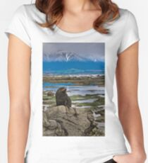 Seal on a Rock Women's Fitted Scoop T-Shirt