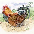 Welsummer cockerel and hen (watercolour on paper) by Lynne Henderson