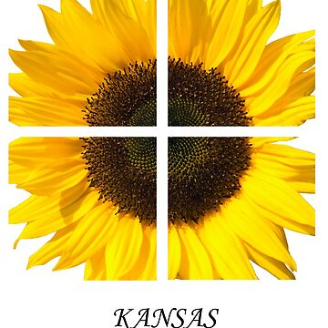 Kasas Sunflower by BWBConcepts