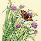 Tortoiseshell and Chives (acrylic on tinted paper) by Lynne Henderson