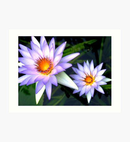 Blue Lotuses Art Print