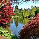 VanDusen Gardens Vancouver by AnnDixon