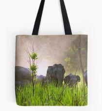 Wild elephant herd, Manas National Park, Assam, India Tote Bag