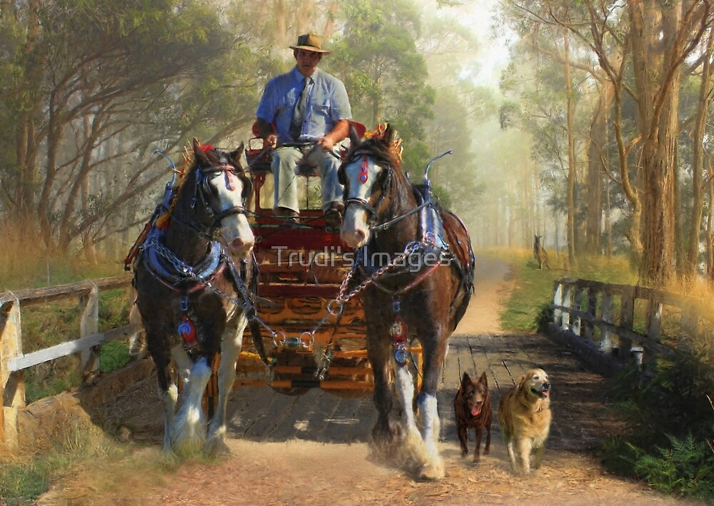 At Durdidwarrah Crossing by Trudi's Images