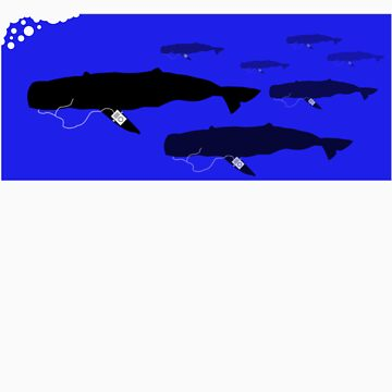 Group of Whales with Popular MP3 players by evanyates
