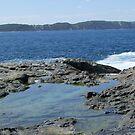 denmark coastal western australia by Rick Playle
