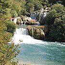 Krka River and Falls by Elena Skvortsova