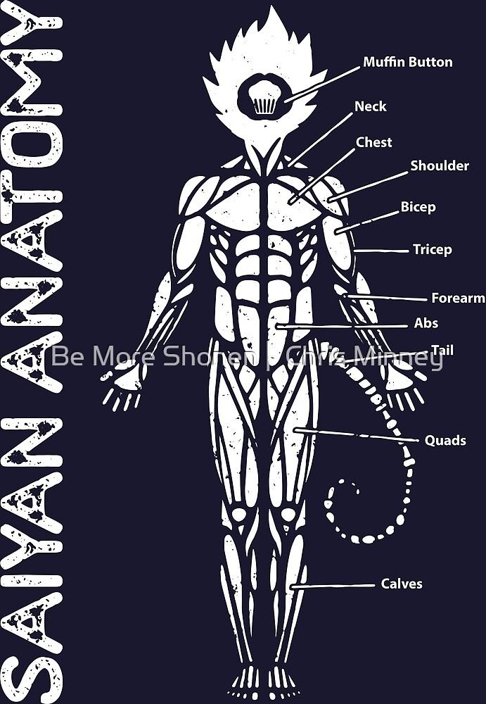Saiyan-Anatomie - Bodybuilding-Diagramm\