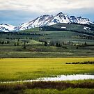 Yellowstone Meadow by EthanQuin