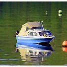The  Boat by Alexander Mcrobbie-Munro