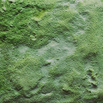 Green Abstract Salt Painting by ChristopherNeal