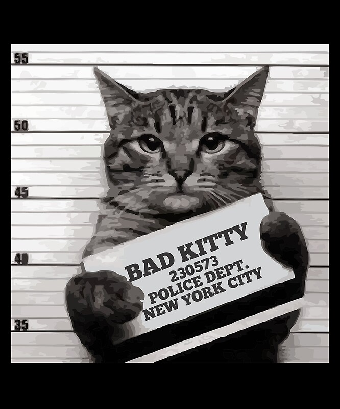 Quot Mugshot Cat Mr Furrypants Bad Kitty Quot By Printedkicks