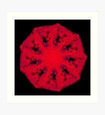 WDVT Mandala - 0041 - Background Radiance Art Print