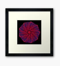 WDVT Mandala - 0043 - Hither and Thither Framed Print